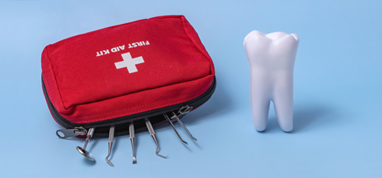 Tooth and First Aid Bag